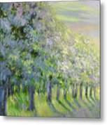 Dreamy Trees Metal Print