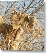Dried Palm Fronds In The Wind Metal Print