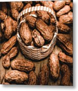 Dried Whole Peanuts In Their Seedpods Metal Print