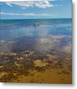 Driftwood At Low Tide In Key West Metal Print