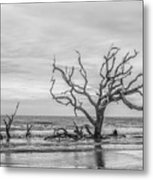 Still Standing In Black And White Metal Print