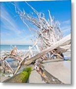 Driftwood C141349 Metal Print