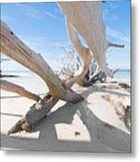 Driftwood C141414 Metal Print