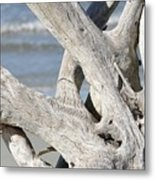 Driftwood Detail Metal Print