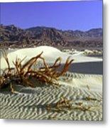 Driftwood Dune Metal Print