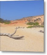 Driftwood On Boca Keto's Secluded Beach Metal Print