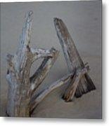Driftwood Reaches Metal Print