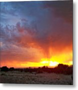 Drink The Sky  Metal Print