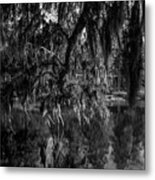 Drippin With Spanish Moss At Middleton Place Metal Print