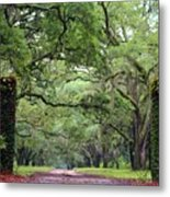 Driveway To The Past Metal Print