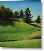 Driving By A Michigan Meadow Metal Print