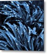 Drops And Blue Grass Metal Print