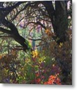 Drought Fall Metal Print