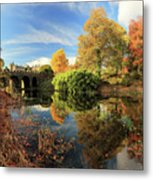 Drummond Garden Reflections Metal Print