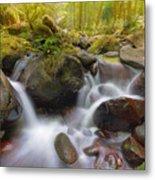 Dry Creek II Metal Print
