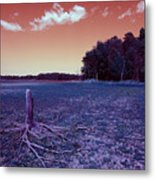 Dry Lake Infrared Metal Print