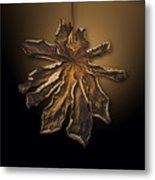 Dry Leaf Collection Digital  Metal Print