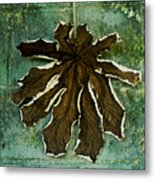 Dry Leaf Collection Wall Metal Print