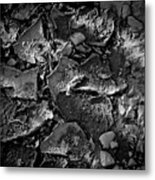 Dry Work Yard Metal Print