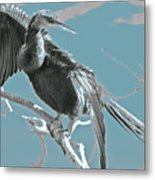 Drying My Wings Metal Print