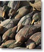 Duck Decoys On Burano Metal Print