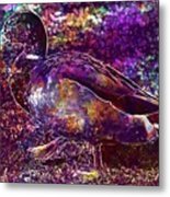 Duck Mallard Anatidae Duck Bird  Metal Print