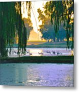 Duck Pond At Dawn Metal Print
