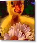 Fuzzy Duckling And Daisies Metal Print