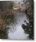 Ducks From The Bridge Metal Print