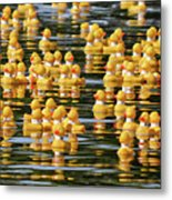 Ducks In A Row Metal Print