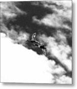 Ducks In Flightt Metal Print