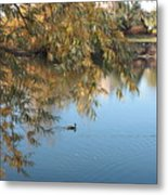Ducks On Peaceful Autumn Pond Metal Print