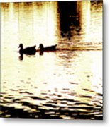 Ducks On Pond 1 Metal Print