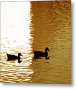 Ducks On Pond 2 Metal Print