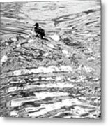 Ducks Swirl Metal Print