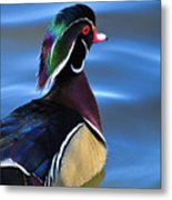 Ducktail Soup Metal Print