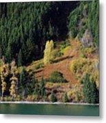 Duffey Lake Colors Metal Print