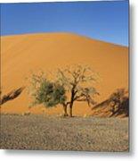 Dune 45 And Trees Metal Print