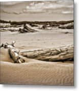 Dune Country Metal Print