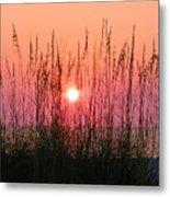 Dune Grass Sunset Metal Print