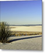 Dunes And Yucca One Metal Print