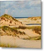 Dunes At Gulf Shore Metal Print