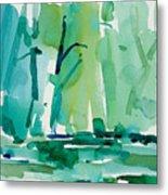 Dunfield-creek-_37-11x14 Metal Print
