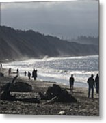 Dungeness Spit Metal Print
