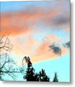 Dusk And Dogs Metal Print
