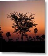 Dusky Tree Metal Print