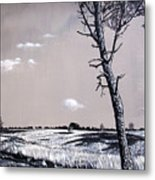Dutch Heathland Metal Print