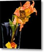 Dying Dahlia Flower Metal Print