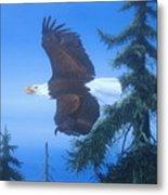 Eagle At Treetop Level Metal Print