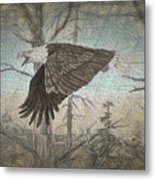 Eagle  In Forest Metal Print